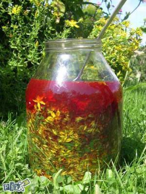 kantarionovo-ulje (1)