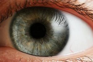 oko-oci-vid-okulistika.thumbnail