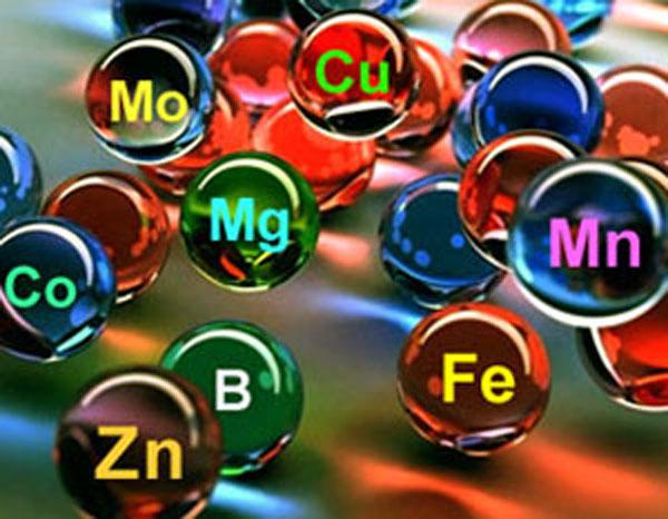minerali-III