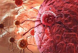celije-raka-1389563626-426459