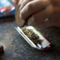 Marihuana je itekako opasna za zdravlje