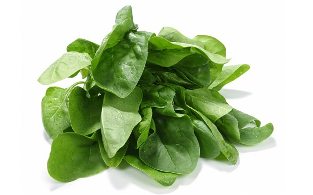 Spinach_2337460b