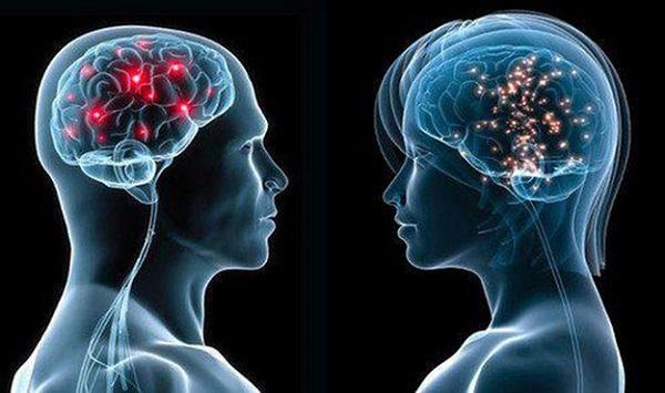 Imuni sistem u direktnoj vezi sa mozgom