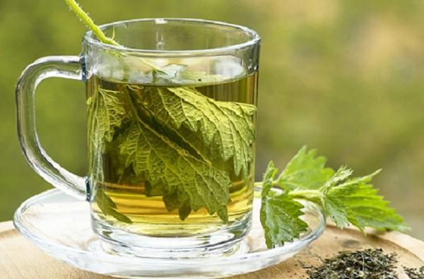 Domaći prirodni sok od koprive