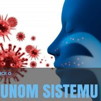 Činjenice o imunom sistemu