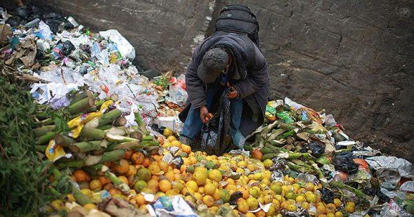 Petina svetske hrane se baci