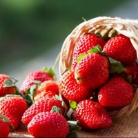 Zdravstvene koristi od jagode